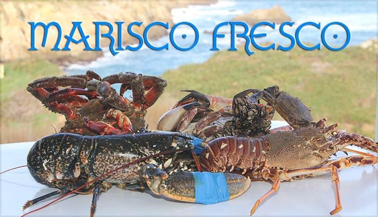 comprar-marisco-gallego-online